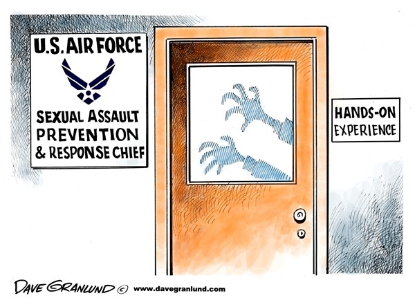 131378 600 USAF sexual assault division cartoons