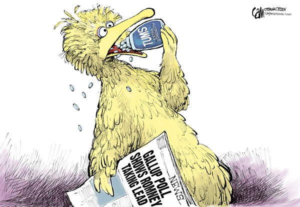 Polls © Cardow,The Ottawa Citizen,Gallup,poll,election,2012,romney,obama,election polls,big bird