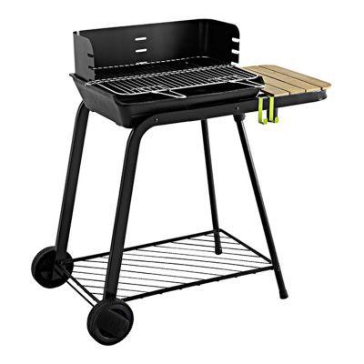 barbecue barbecue a gaz barbecue a