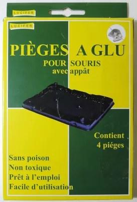 Boite De 4 Pieges A Glu Pour Souris Castorama