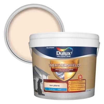 peinture facade protection extreme dulux valentine ton pierre 10l