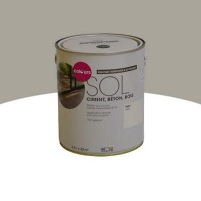 Peinture Sol Interieur Exterieur Colours Sable Satin 2 5l Castorama