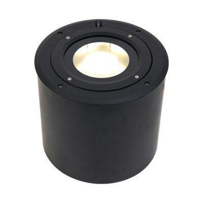 Spot Exterieur A Enterrer Inclinable Blooma Alba Noir H 24 Cm Castorama