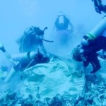 $10k needed to keep reef restoration project going
