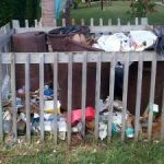 Garbage collection delays negate DEH claims
