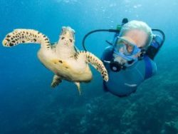 Jean-Michel Cousteau, Cayman News Service