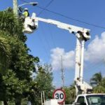 New street lights to help save baby turtles