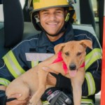 Quillan and Quinn find puppy love at Fire Service