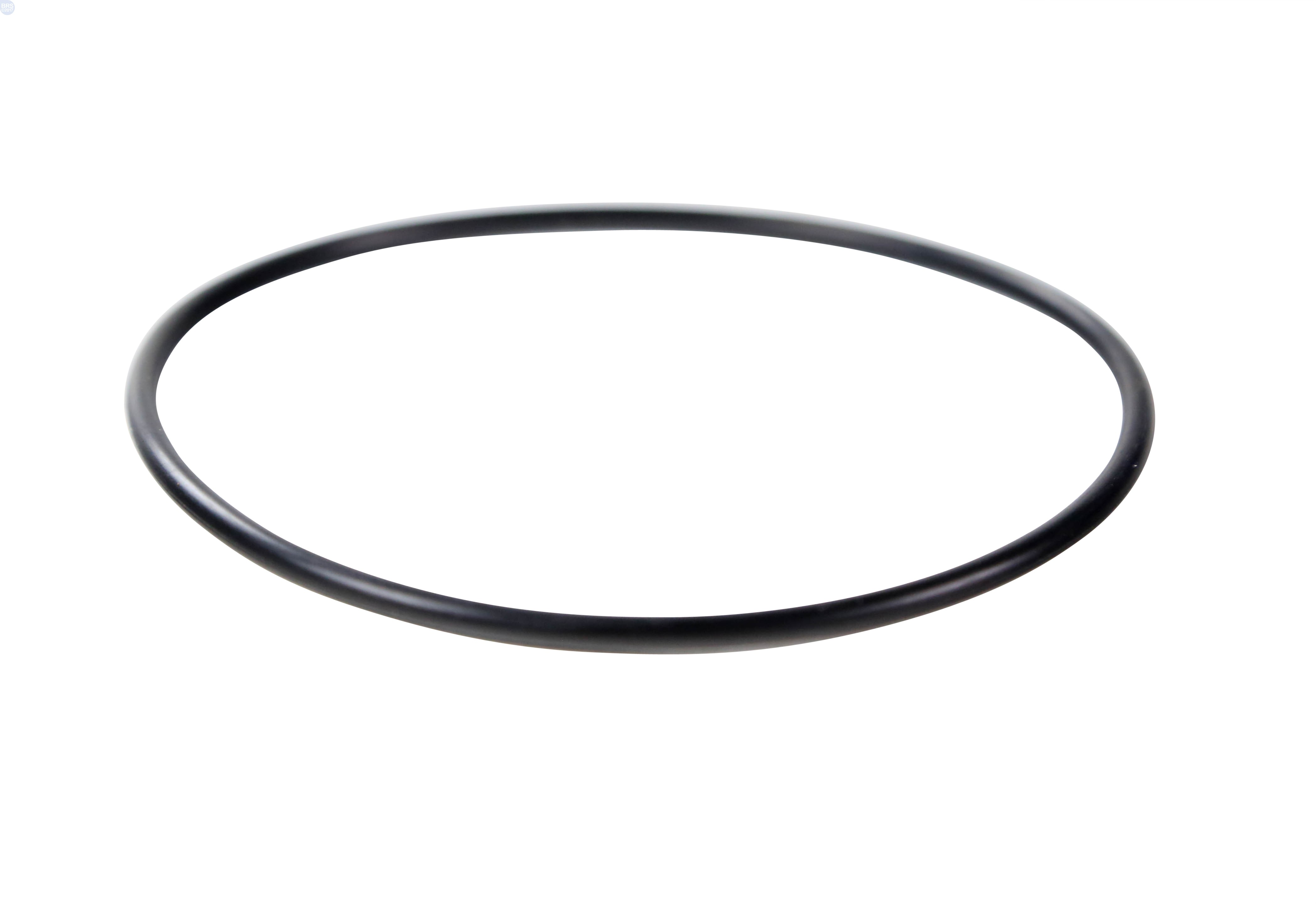 O Ring For 20 Canister Spartan