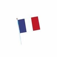 Lot de 5000 drapeaux francais à agiter