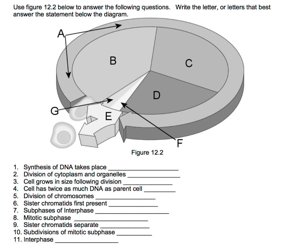 Solved Use Figure 12 2 Below To Answer The Following Ques
