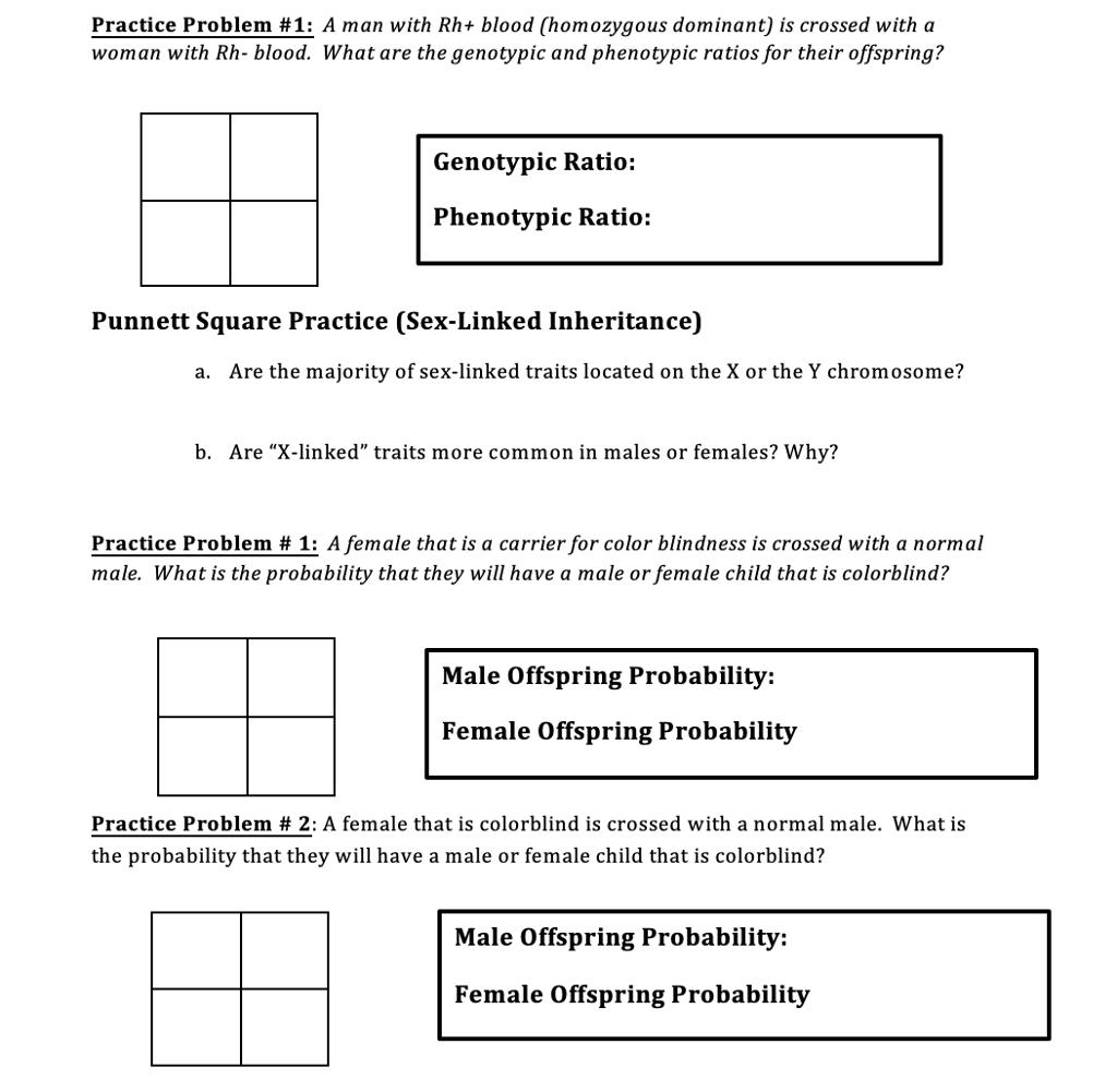 Worksheet 2 Linked Traits Answers