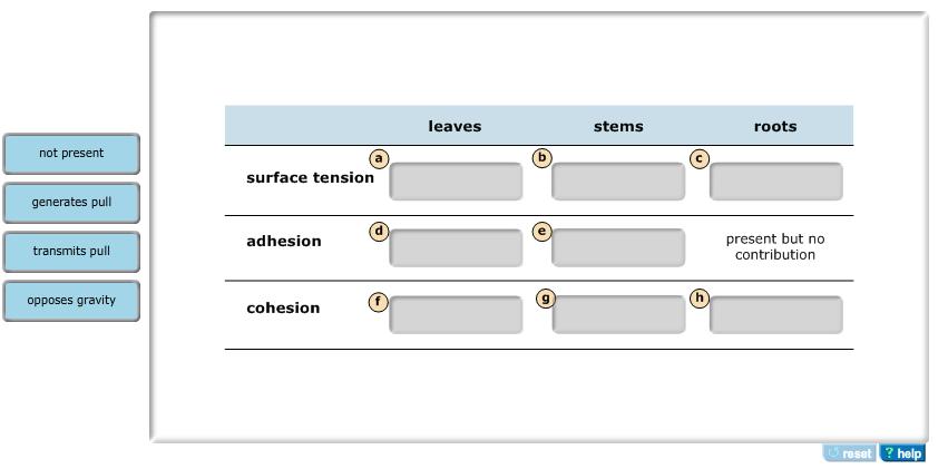 Stage Directions Diagram Worksheet