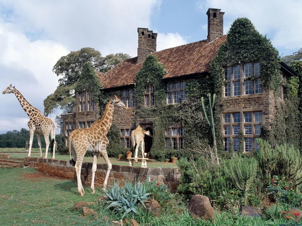8 Hotels Where Wild Animals Roam Free