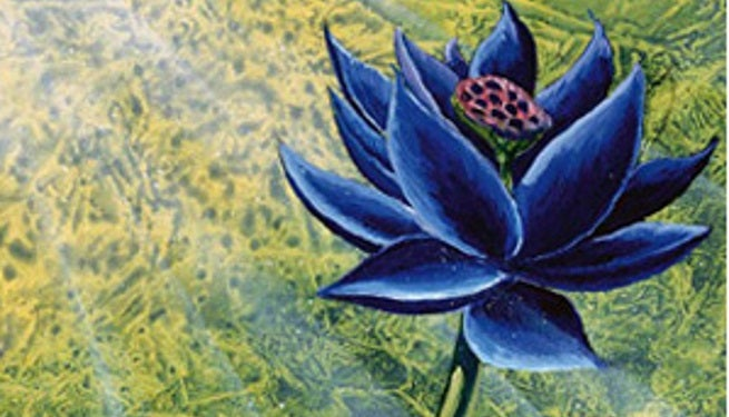 Image result for black lotus