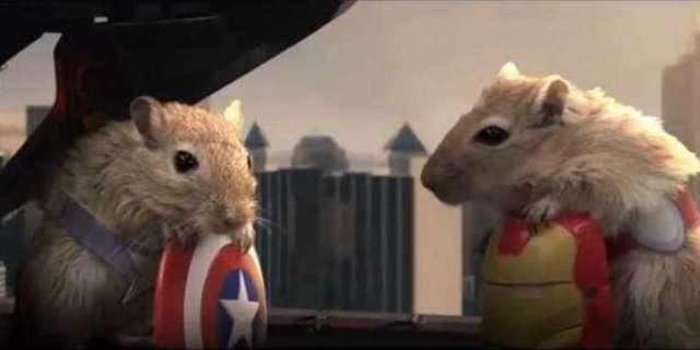 The AvenGerbils Hamster Of Thor Trailer Debuts On Jimmy