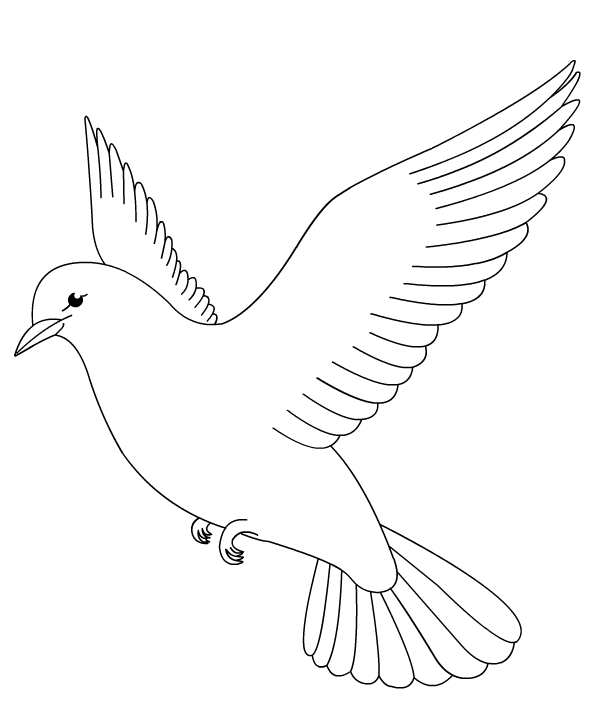 birds coloring book pages color dove