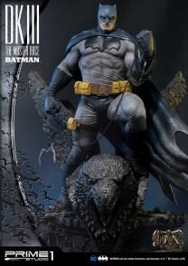 Dark Knight 3 master race (10)