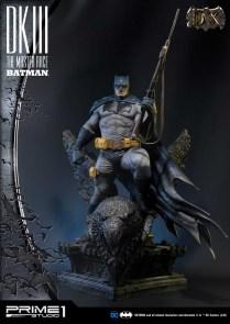 Dark Knight 3 master race (8)