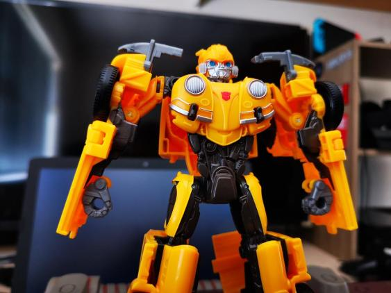 Bumblebee (9)