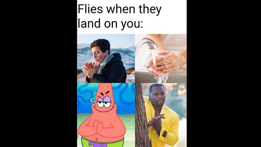 Memes (1) (2)