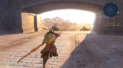 Dynasty Warriors 9 (8)