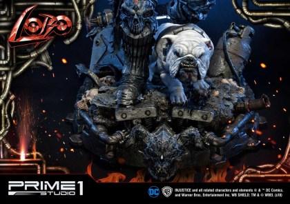 Prime 1 Lobo (13)