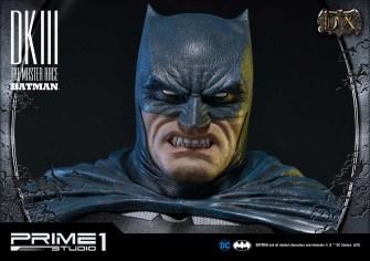 Dark Knight 3 master race (15)