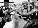 24 de abril. Fidel visita el zoologico del Bronx, Nueva York. Foto: Revolución.