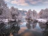 flickr-paisaje-arboles-nieve