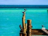 Playas de Cuba. Foto: Abel Padrón Padilla/Cubadebate