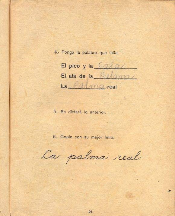 manual-3