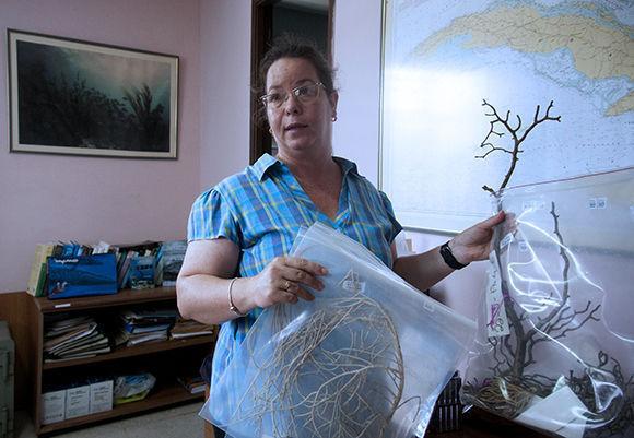 Patricia, la bióloga cuyas descripciones nos permitieron subir al buque de investigación estadounidense F. C. Walton Smith, aun cuando nunca estuvimos en él. Foto: Irene Pérez/ Cubadebate.