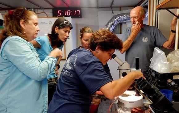 Los especialistas identifican las muestras colectadas por el ROV. Foto: Patricia González/ ICIMAR.