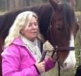 Häst och homeopat