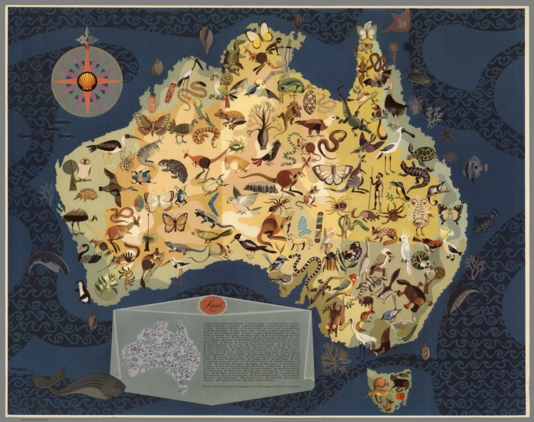 Australia   Decorative Animals by George Santos    David Rumsey     Australia   Decorative Animals by George Santos