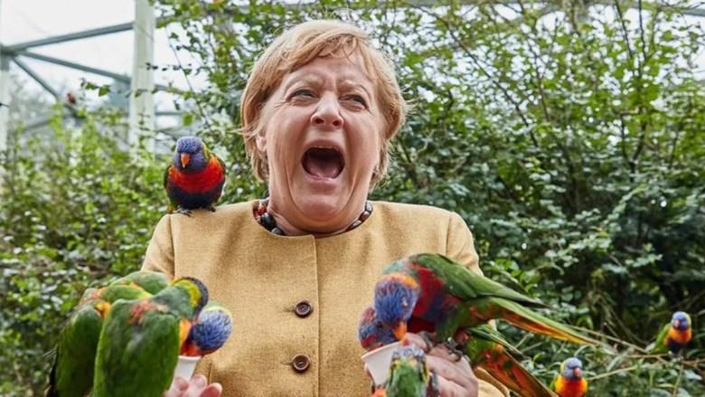 Angela Merkel, asediada por loros.