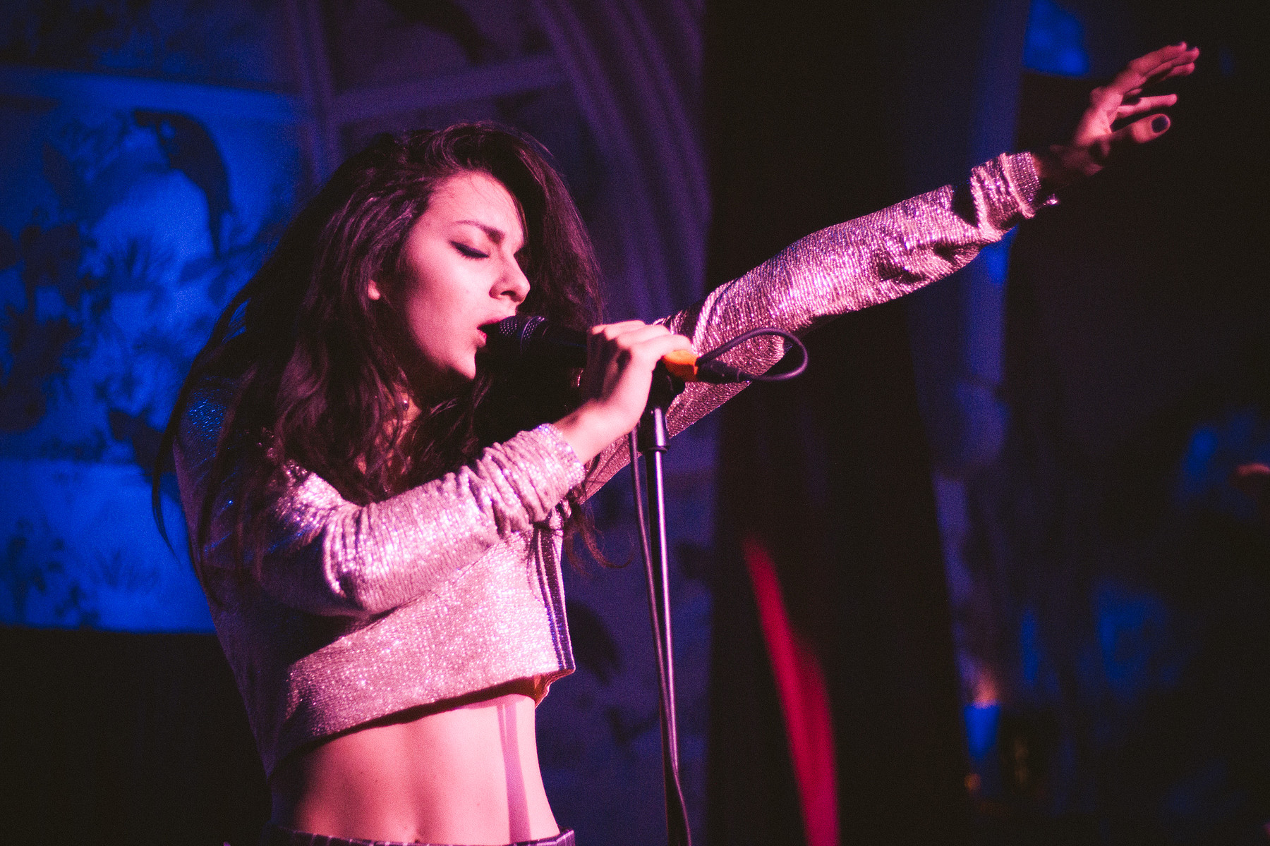 Image result for charli xcx live