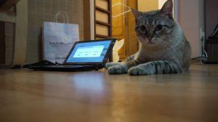laptop maguay (38)