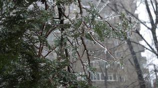 freeezing rain in Bucuresti polei in bucuresti iarna zapada viscol cod portocaliu (10)