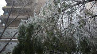 freeezing rain in Bucuresti polei in bucuresti iarna zapada viscol cod portocaliu (8)