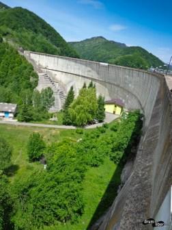 Lacul Paltinu (barajul)