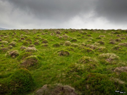 Muntele cu Mușuroaie