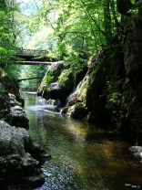 Vedere spre cascadă și pod