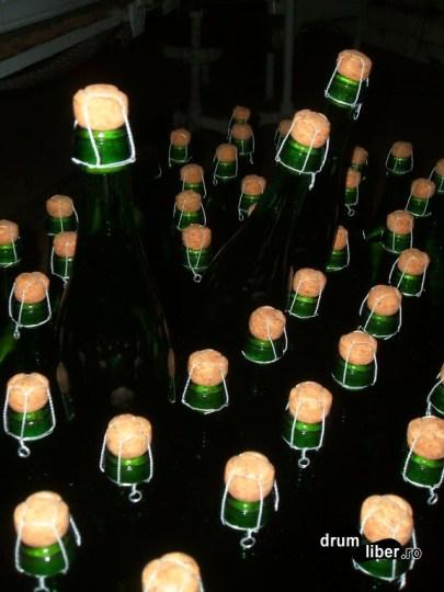 Sticle înainte de etichetare
