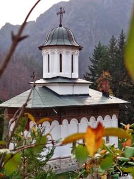 Mănăstirea Turnu