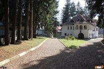 Drumul spre Casa Memorială Enescu