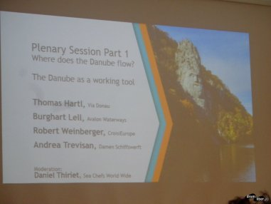 Plenara 1: încotro curge Dunărea?