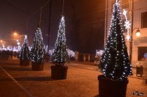 Decorațiuni de iarnă în Iași