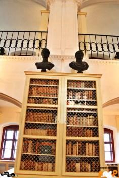 Sculpturi și cărți. Artă și știință